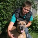 BVT-Tierheim Wesel appelliert an die Verantwortung von Hundehaltern