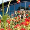 Blumenpracht & Rhododendronblüte -  Bad Zwischenahn – Westerstede – Wilhelmshaven